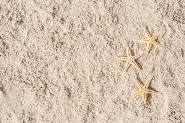 Drie zeester op het zand. bovenaanzicht, plat gelegd.