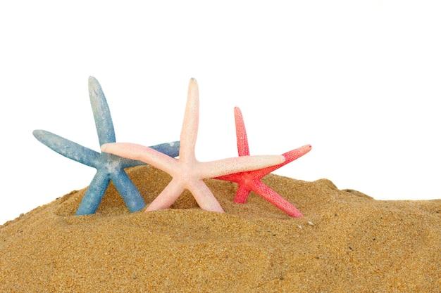 Drie zeesterren in zand geïsoleerd op een witte achtergrond