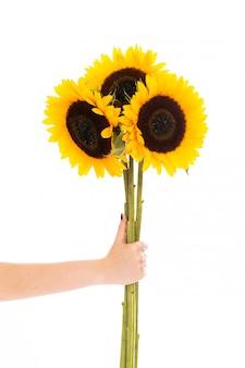 Drie zonnebloemen
