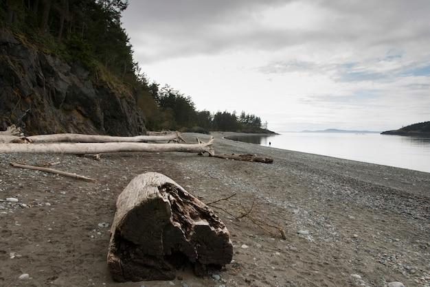 Drijfhoutlogin strand in het park van de staat van de teleuringspas, eiken haven, de staat van washington, de vs