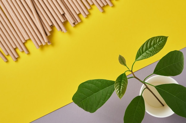 Drinkbuizen gemaakt van papier en maizena, biologisch afbreekbaar materiaal en eco papieren glazen met groene spruitblaadjes op gele trendkleur 2021 achtergrond. geen afval en plasticvrij concept. bovenaanzicht