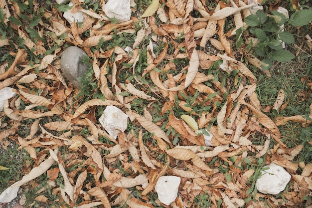 Droge bladeren gemengd met stenen natuurlijke gestructureerde achtergrond herfst getextureerde achtergrond met bos mate...