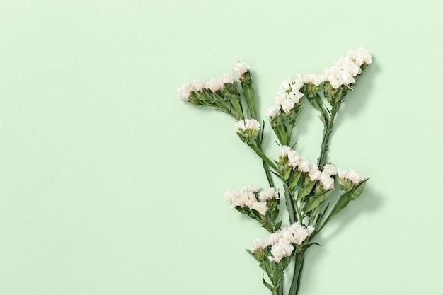 Droge bloemen en bladeren met exemplaarruimte