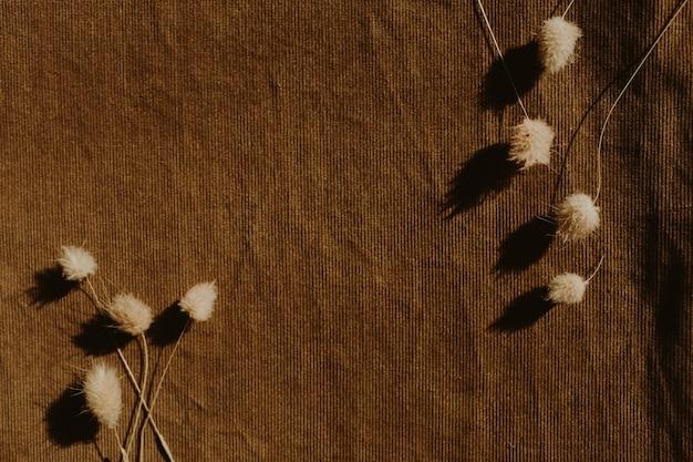 Droge bloemen op donkerbruin.