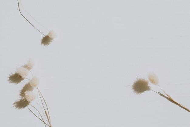 Droge bloemen op stoffig grijs