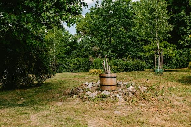 Droge boom in een houten pot