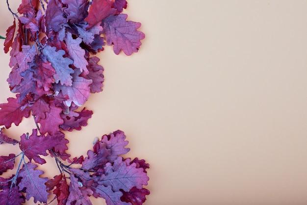 Droge bruine, rode en paarse eikenbladeren. grens madedried bladeren op pastelkleur biege achtergrond. herfst platte achtergrond.