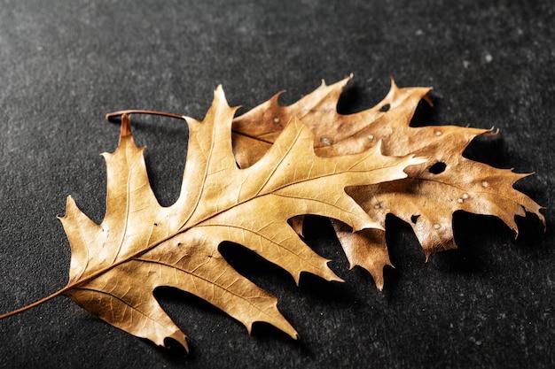 Droge de herfstbladeren op een grijze steenachtergrond. herfst textuur.