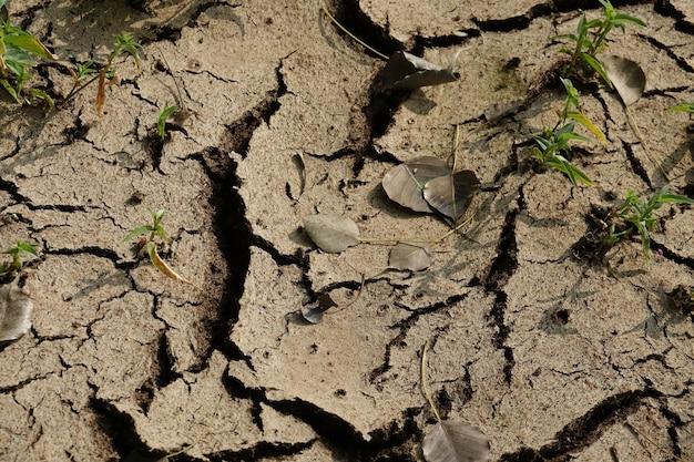 Droge en gebarsten grond