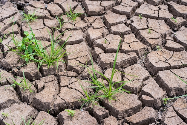 Droge en gebroken kleigrond tijdens droogteseizoen