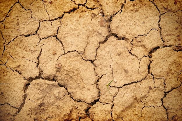 Droge gele grond in de woestijn. textuur voor achtergrond