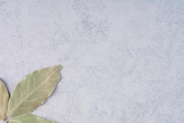 Droge laurierblaadjes op betonnen ondergrond.