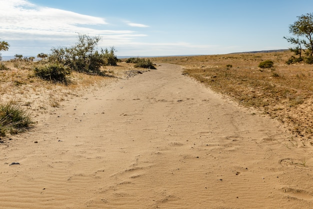 Droge rivier in de woestijn, gobi-woestijn, mongolië