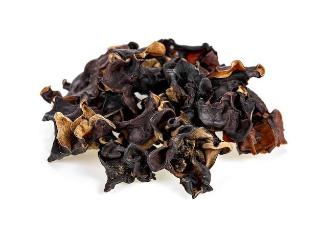 Droge zwarte schimmel, boomoor of houtoorpaddestoel die op witte achtergrond wordt geïsoleerd.