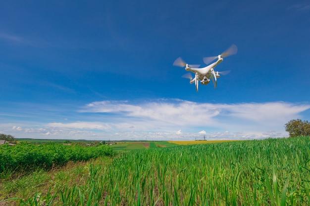 Drone quad copter op zoete maïsveld