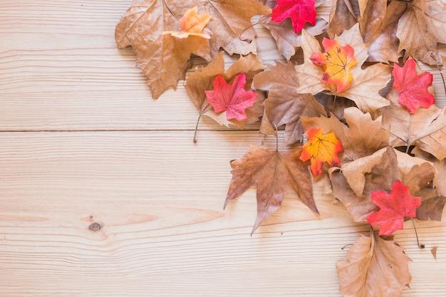 Droog bladeren op houten bureau