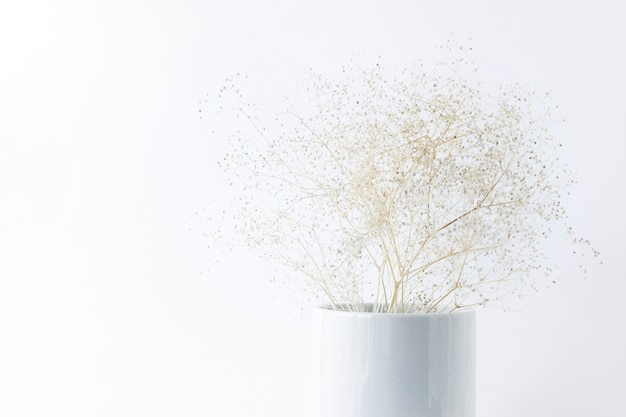 Droog delicate bloemen in een witte vaas op een witte achtergrond.