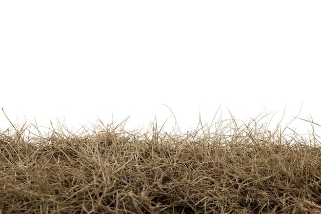 Droog die gras op wit achtergrond droog grasgebied wordt geïsoleerd met het knippen van weg.