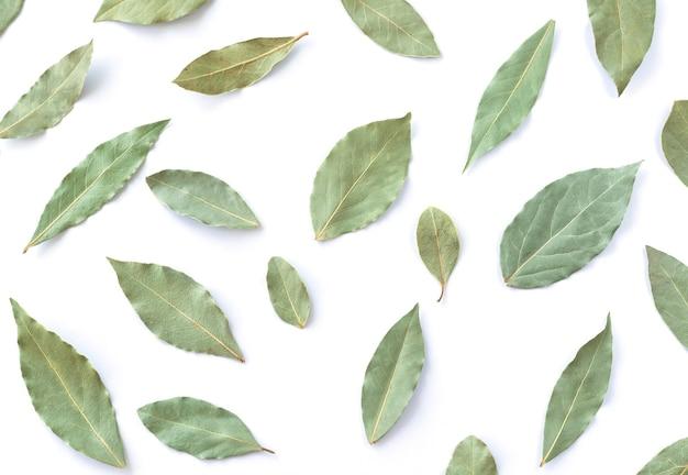 Droog groen blad ingesteld geïsoleerd bovenaanzicht