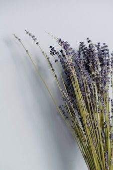 Droog lavendelboeket dat op grijze achtergrond wordt geïsoleerd. kopieer ruimte
