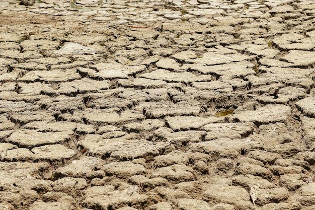 Droog meerbed. droogte grond. concept van klimaatveranderingen en opwarming van de aarde.