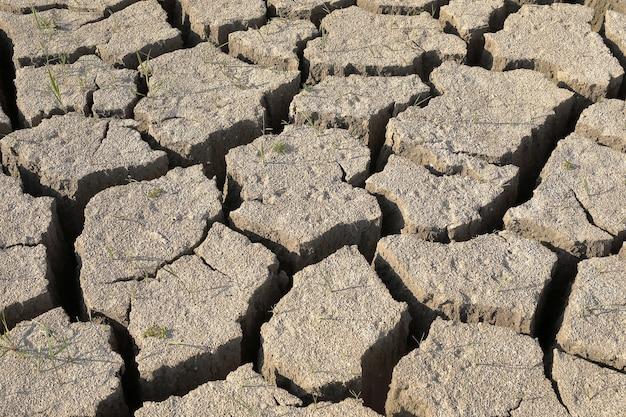 Droogte. droge grond, de grond is bedekt met de textuur van scheuren. close-up, bovenaanzicht.