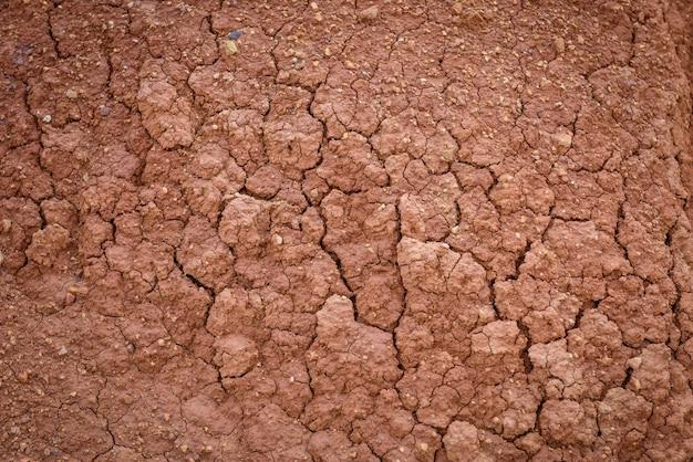 Droogte land, opwarming van de aarde en ontbossing