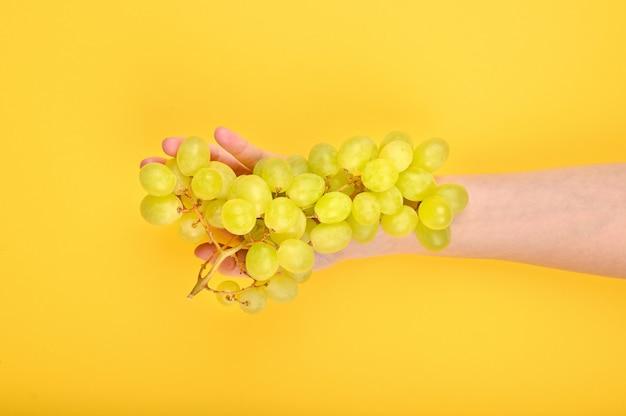 Druiven worden op de hand gelegd. op een gele achtergrond. volumetrische druiven. een bos van groene druivenstruik. plat liggen