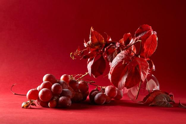 Druiventakken in een glazen vaas en een tros druiven op een rode achtergrond