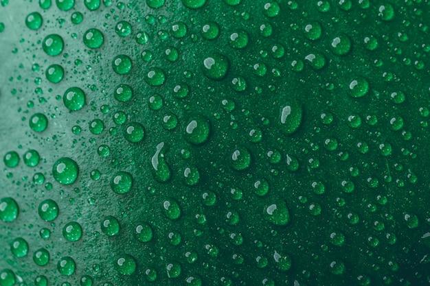 Druppel water op groene textuur van blad, tropische plant