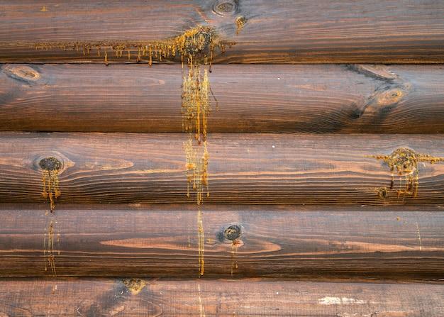 Druppels hars vallen tijdens zomerse hitte van de houten huismuur.