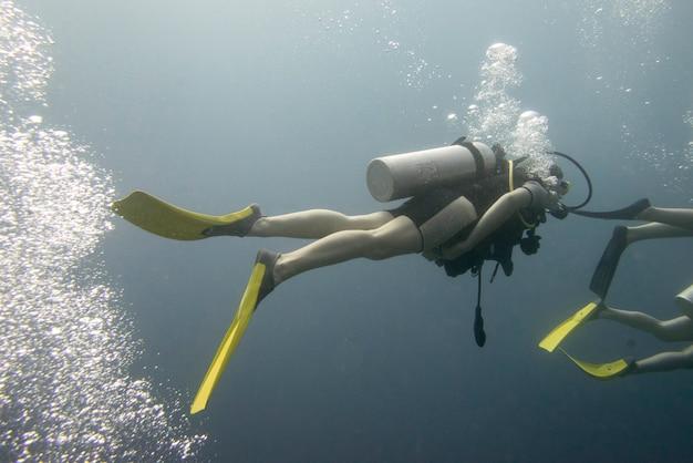 Duikers onderwater, utila, baai-eilanden, honduras