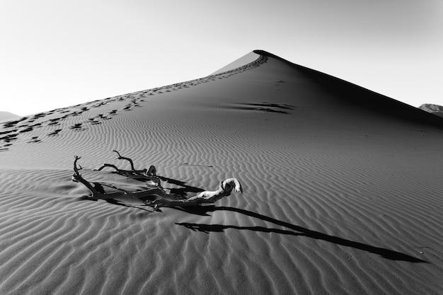 Duinen op weg naar sossusvlei, namibië. opzettelijk digitaal veranderd beeld. zwart en wit.