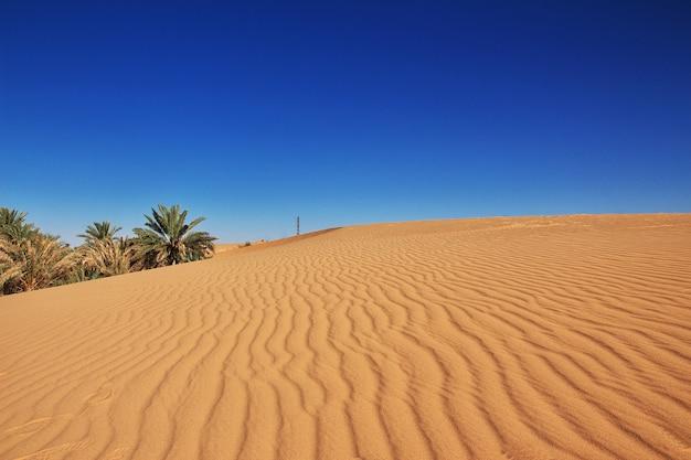 Duinen van zand in de woestijn van de sahara, algerije