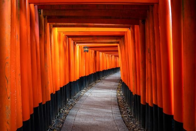 Duizenden rode torii-poorten langs de loopbrug in de taushatempel van fushimi inari zijn belangrijk shinto-heiligdom en bevinden zich in kyoto, japan.