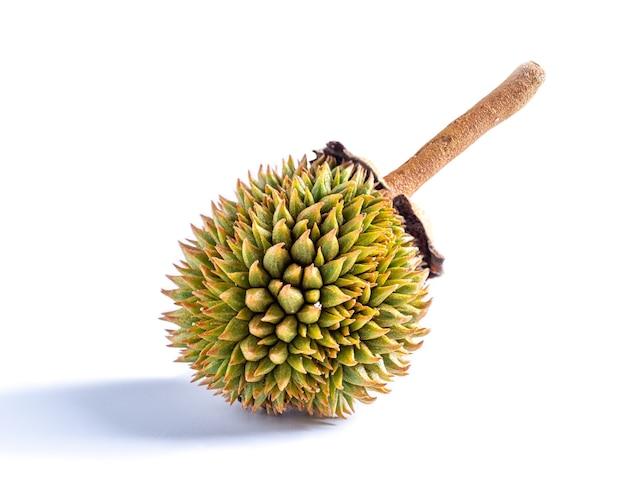 Durian geïsoleerd op een witte achtergrond