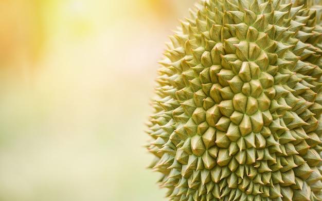Durianhuid voor textuurachtergrond. vers durian fruit