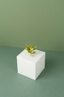 Duurzaamheidsconcept met lege geometrische vormen en groeiende plant growing