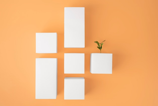 Duurzaamheidsconcept met planten die groeien uit blanco geometrische vormen