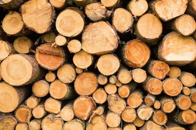 Dwarsdoorsnede van de stapel hout gesneden bomen brandhout voor de achtergrond