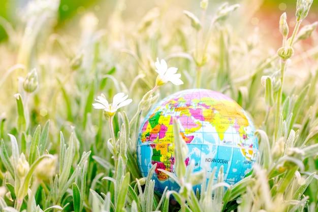 Earth globe op het gras. red de natuur. milieu. zomerdag, concept van ecologie en het redden van de planeet.