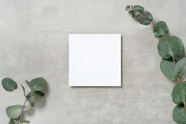 Echte foto. vierkant uitnodigingskaartmodel met een eucalyptustak. bovenaanzicht met kopie ruimte, lichtgrijze betonnen achtergrond. sjabloon voor branding en reclame