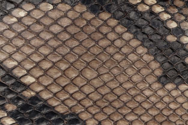 Echte slangenhuid. lederen textuur achtergrond. close-up foto.
