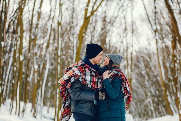 Echtpaar in de winter
