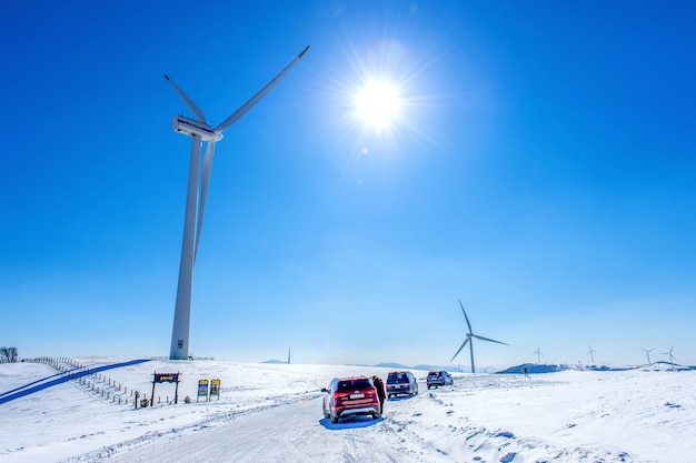 Eco green campus, daegwallyeong samyang ranch in de winter en toeristen met auto in daegwallyeong samyang ranch
