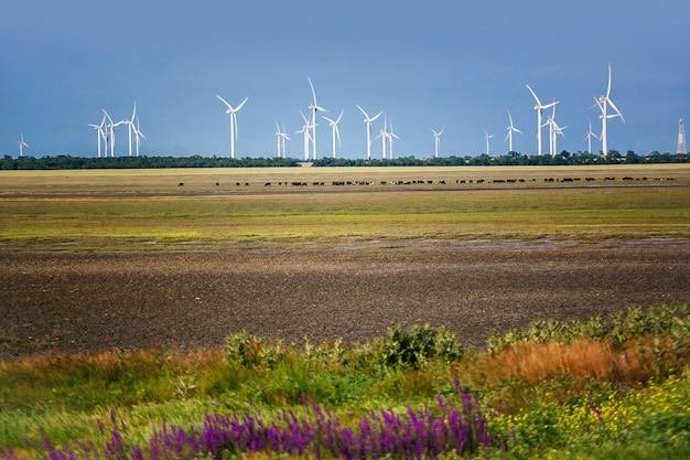 Eco power, windturbines