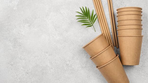 Eco-vriendelijk wegwerpservies en bladeren