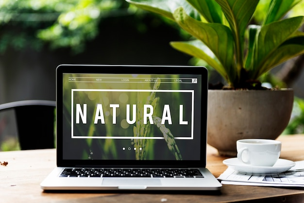 Ecologie fris weelderig natuurlijke natuur