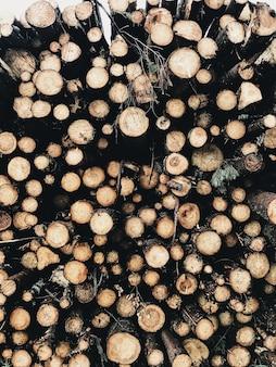 Een abstract patroon met ronde houtstapels