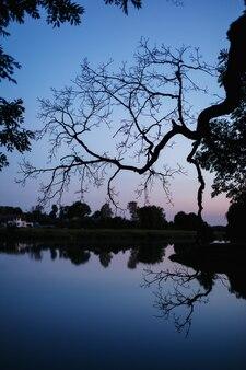 Een achtergrond van het nachtmeer in openlucht